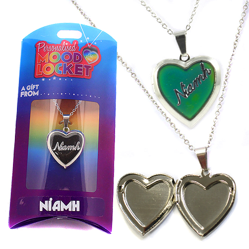 Personalised Mood Locket: Niamh